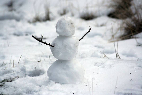 Would You Like To Build A Snowman? - Snow Day Activities for Kids